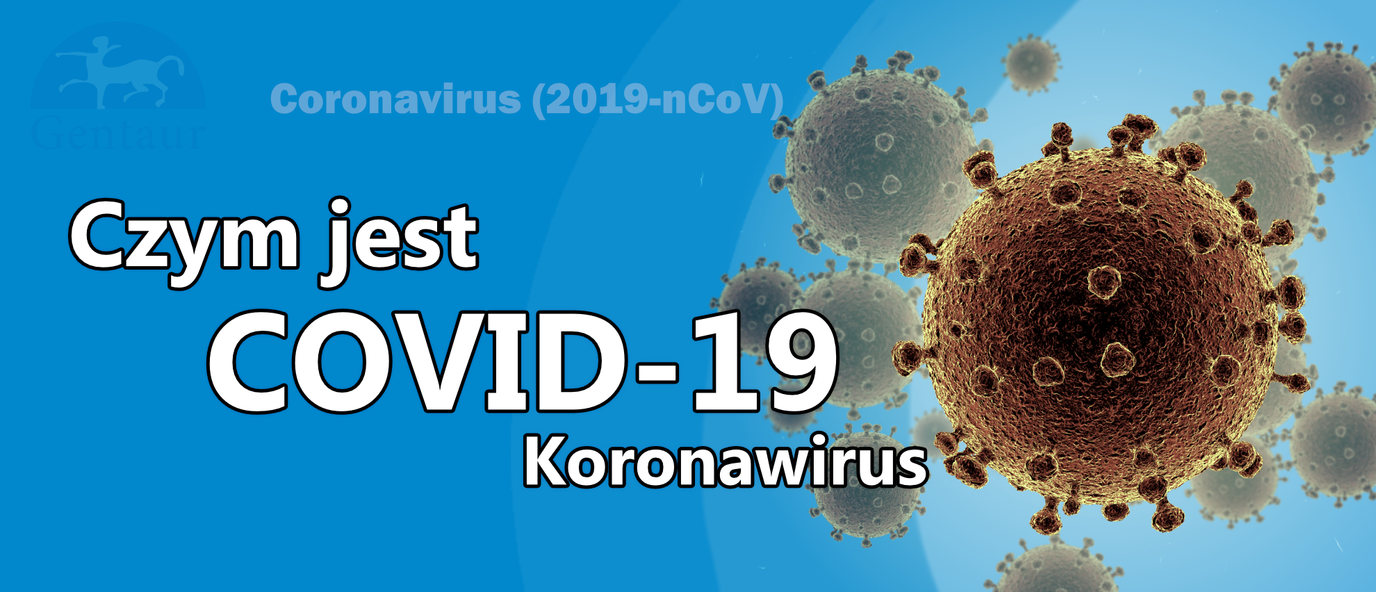 czym jest- koronawirus covid-19 corona virus